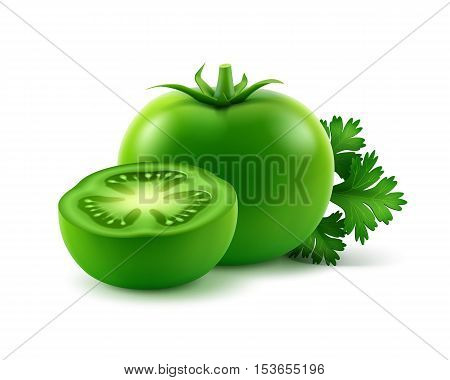 Vector Big Ripe Green Fresh Cut Whole Tomatoes with parsley Close up Isolated on White Background