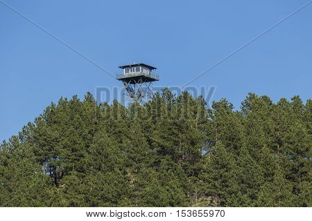 A fire watch tower above the trees.
