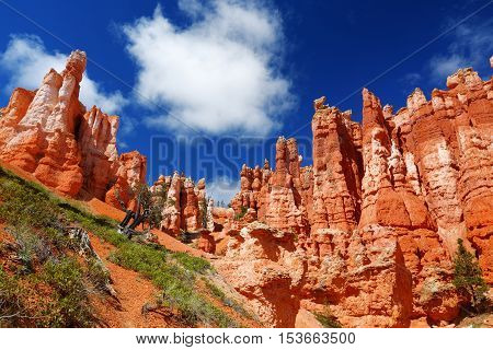 Scenic View Of Stunning Red Sandstone Hoodoos In Bryce Canyon National Park