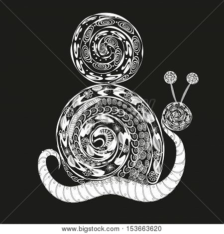 Large white snail Abstract design pattern molluscs shell flower pattern, swirls, swirl, leaf shell ornament ball white line on a black handmade eps10 vector illustration Stock
