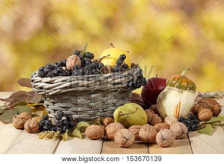 Autumn gifts: walnuts aronia apples pear pumpkin on wooden table and in a wicker basket on yellow leaves background. Ladybugs climb berries