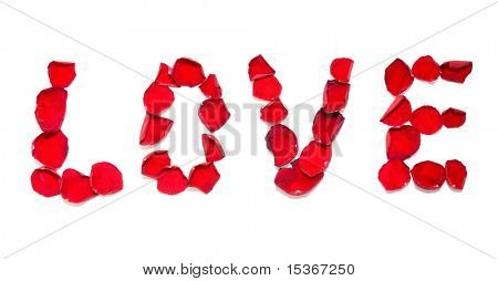 Love inscription. Red rose petals on white.