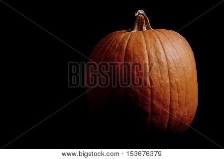 orange pumpkin on black background Halloween concept