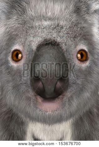 3D rendering of a head of a koala bear closeup