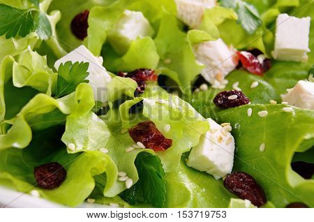 Salad of lettuce with dried cranberries feta sesame and chicken breast