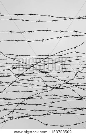 Fencing. Fence with barbed wire. Depressive background. Black and white. Photo