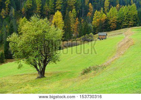 Alpine ladscape in the Dolomites, Italy, Europe