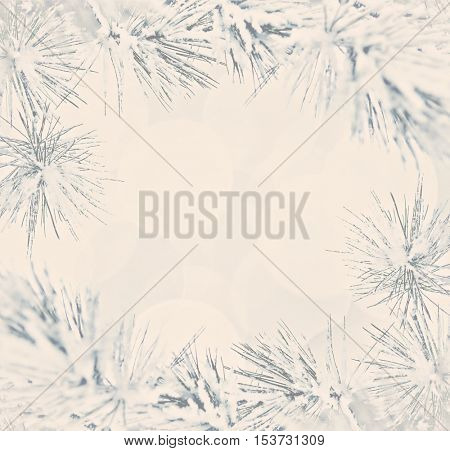 Border of Pine needles covered in snow, holiday background