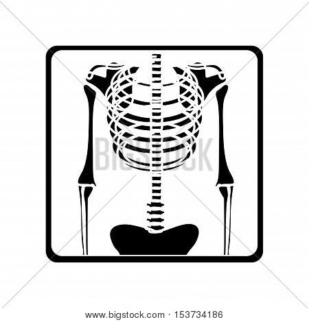 chest x-ray icon image vector illustration design