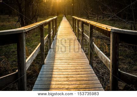 Wooden boardwalk receding into distance over marshland and at sunset