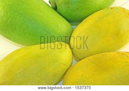Greeen & Yellow Mango
