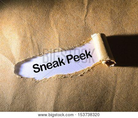 Sneak Peek on the brown torn paper