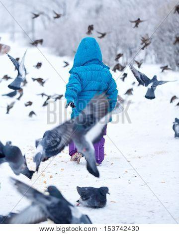 Cute little girl on a walk in a winter park. Kid frightened pigeons. Birds flew. Childhood Joy.
