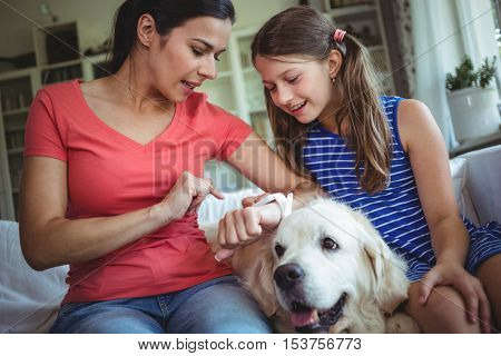 Mother and daughter sitting with pet dog and checking the smart watch at home