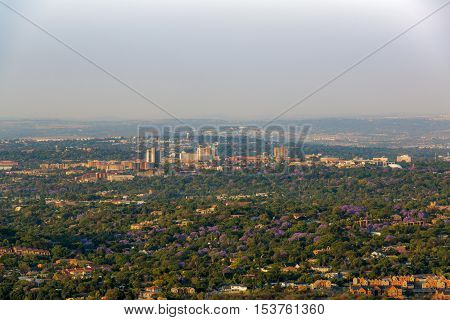 Randburg Johannesburg surrounded with Jacaranda trees October 2016