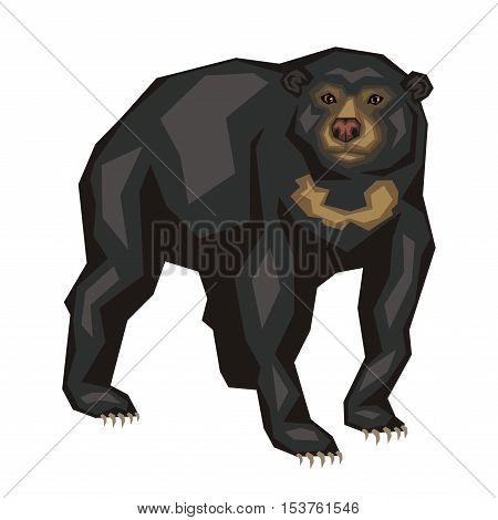 Malayan sun bear. Vector image of a predatory animal. Isolated on a white background.