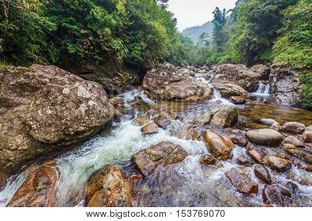 Flowing river through rock ravine in tropical forest of Cat Cat village Sa Pa Vietnam.