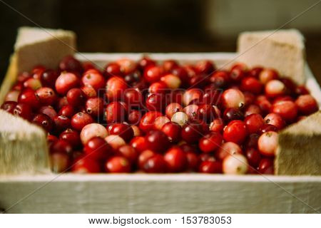 Small wooden box with beautiful red cranberry