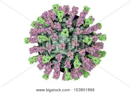 Measles virus. 3D illustration showing structure of measles virus with surface glycoprotein spikes heamagglutinin-neuraminidase and fusion protein