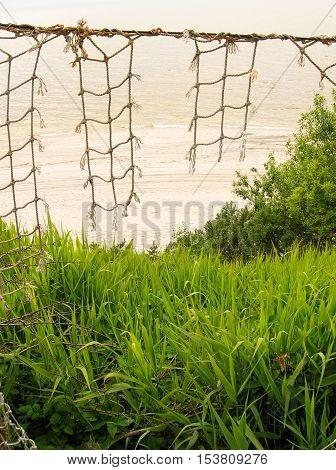 спуск на побережье моря через густые заросли травы