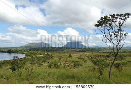 Landscape. beautiful landscape of the Gran Sabana Venezuelan around the village of Canaima