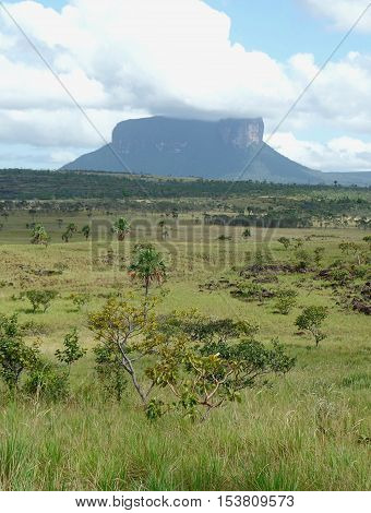 Kuravaina. the Gran Sabana in all its glory ... the Kuravaina tepui like a hat in the meadow. Venezuela