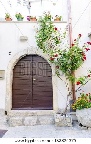 Traditional old Krk town architecture. View of maroon brown door arch stone wall and red rose bush at the medieval ancient capital centre.