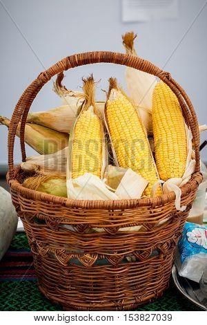 Ear of corn, revealing yellow kernels / photo of maize in a wicker basket