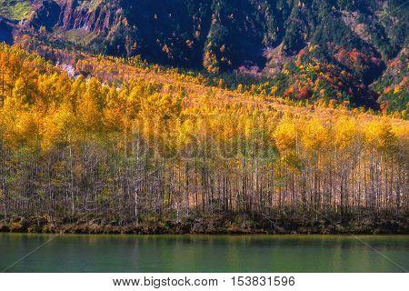 The fall season of kamikochi, Azusa River and Hotaka Ranges, Kamikochi, Japan.