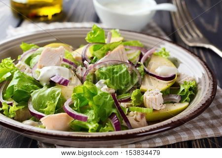 Salad with lettuce apple celery onion and chicken on the gray plate on dark wooden background.Selective focus