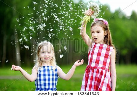 Two Funny Little Sisters Playing With Dandelion Fluff