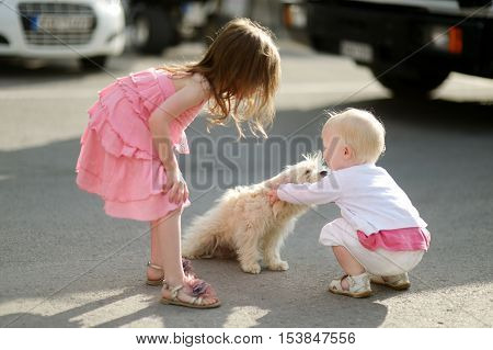 Two adorable girls met a puppy on summer day