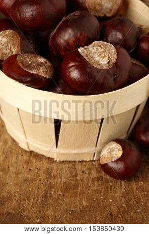 chestnuts in a small basket shallow dof