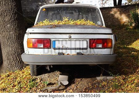 a old car with yellow autumn leaves