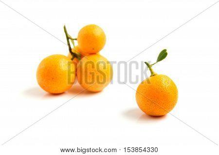 Group of orange Kumquat placed on whte background
