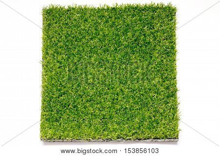 Artificial green grass placed on white background