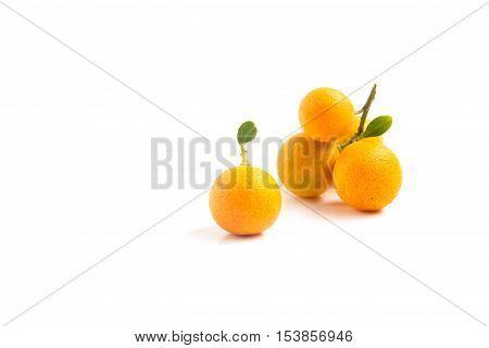 Orange Kumquat is placed on whte background