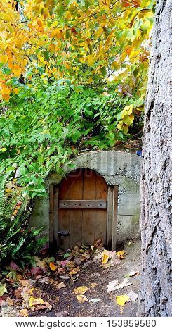 Underground storage shelter in the woods for emergency food and water.