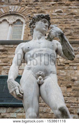 Michelangelo's David sculpture in Piazza della Signoria Florence Italy Europe