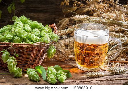 Homemade beer made of fresh hops on old wooden table