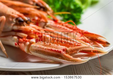 Closeup of feshly cooked scampi on a plate