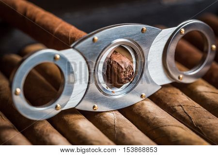 Guillotine cutting off cigar tip and cigars