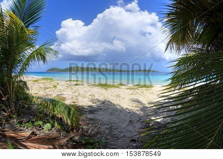 Wide angle view from among coconut palms on Zoni Beach with turquoise blue Caribbean water and North Cay off shore on Isla Culebra on a beautiful sunny day