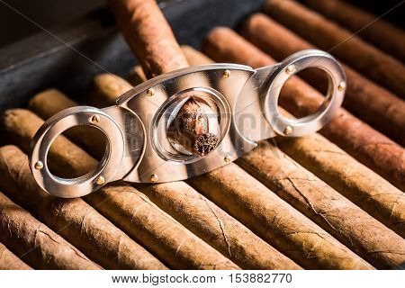 Cutting Off Cigar Tip On Cigars Pile