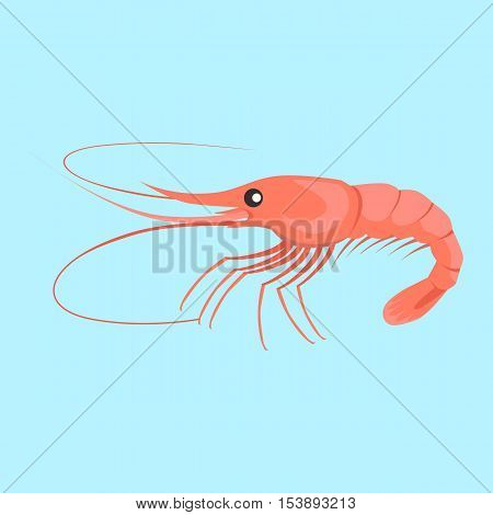 Shrimp vector pattern. Flat style design. Fresh sea shrimp concept. Seafood illustration for packaging, logos, and patterns. Healthy eating marine products. Bright red shrimp on blue background.