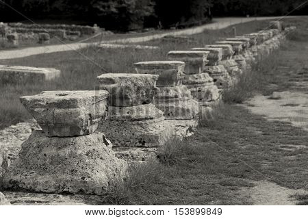 Ruins of Olympia in the Peloponnese Greece