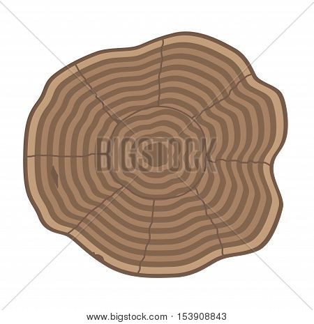 Wood slice texture wooden circle cut tree material. Tree slices wood trunk section natural timber. Slice of tree trunk. Aging round tree slices lumber pattern ring isolated bark.