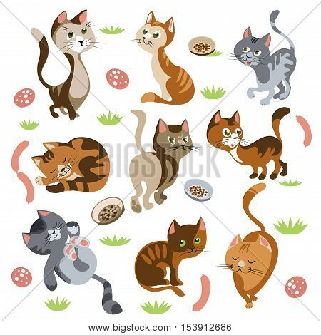 Isolated cartoon images of kittens with different behaviour and coat pattern small shrubs petfood and sausages vector illustration