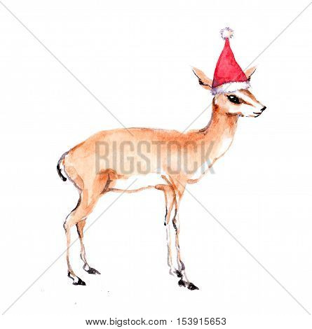 Cute christmas antelope gazelle in red santa's hat. Watercolor christmas animal