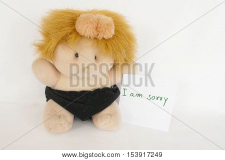 i am sorry message card and baby doll beautiful on background white